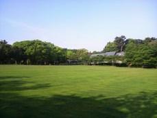 公渕公園の芝生ひろば